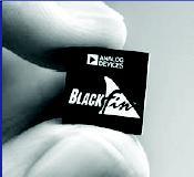 Black-Fin